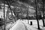 Sask Prints - snow covered kiwanis memorial park downtown Saskatoon Saskatchewan Canada Print by Joe Fox