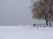 Beverly Livingstone - Snow Covered-Lake Ontario