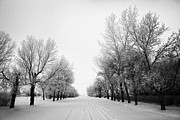 Conditions Framed Prints - snow covered street in small rural farming community village Forget Saskatchewan Canada Framed Print by Joe Fox