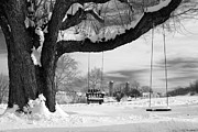Tree Swings Posters - Snow Covered Swings Poster by Mark Van Scyoc