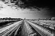 Harsh Conditions Prints - snow covered untreated rural small road in Forget Saskatchewan Canada Print by Joe Fox