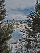 The View Mixed Media Posters - Snow Covered Winter Landscapes Poster by Photography Moments - Sandi