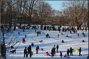 Snow Boarding Prints - Snow Day - Fun Day at the Park Print by Dora Sofia Caputo