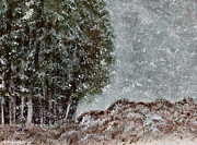 Snowscape Paintings - Snow Day II by Hillary Binder-Klein
