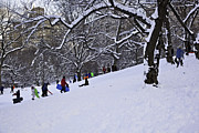 Women Children Photo Prints - Snow Day in the Park Print by Madeline Ellis