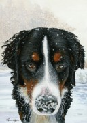 Bernese Mountain Dog Posters - Snow Day Poster by Liane Weyers