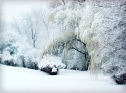 Snow Covered Trees Posters - Snow Dream Poster by Julie Palencia