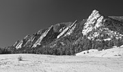 Winter Landscapes Framed Prints - Snow Dusted Flatirons Boulder CO Panorama BW Framed Print by James Bo Insogna