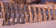 Snow Drifts Photos - Snow Fence by Daniel L Burlingame