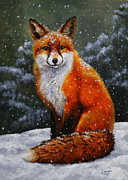 Christmas Dog Posters - Snow Fox Poster by Crista Forest