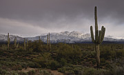 Saija  Lehtonen - Snow Frosted Four Peaks