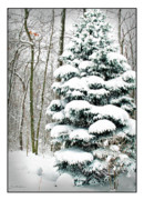 Christmas Holiday Scenery Art - Snow in Ohio by Joan  Minchak