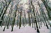 Natural World Paintings - Snow in the forest by George Atsametakis