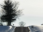 Winter Roads Metal Prints - Snow Metal Print by Joyce  Kimble Smith
