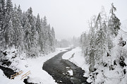 Snow-covered Landscape Photo Prints - Snow Landscape - Trees and river in winter Print by Matthias Hauser