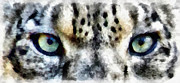Leopard Mixed Media Posters - Snow Leopard Eyes Poster by Angelina Vick