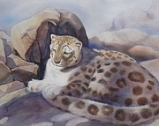 Marilyn Jacobson - Snow Leopard