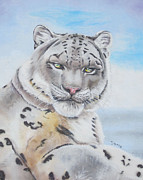Thomas J Herring - Snow Leopard on canvas