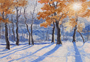 Crisp Drawings Prints - Snow Light Print by Diane Bay