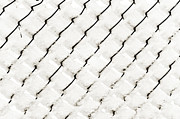 Chain Link Framed Prints - Snow Link Fence Framed Print by Andee Photography