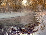 Christmas Card Photo Originals - Snow Melts Into Mist by William Fields