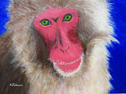 Suzanne Johnson - Snow Monkey