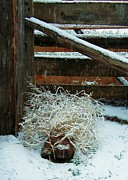 Diana Dearen - Snow on Fence and...