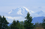 Mount Baker Posters - Snow on Mount Baker Poster by Sharon  Talson