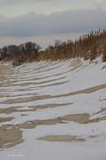 Tannis  Baldwin - Snow on the Beach