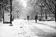 University Of Michigan Metal Prints - Snow on the Diag Metal Print by James Howe