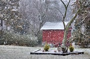 Barns North Carolina Prints - Snow on the Shed Print by Benanne Stiens
