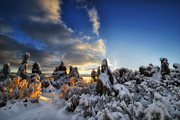 Sunrise Pyrography Prints - Snow on Tufa at Mono Lake Print by Peter Dang