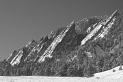 Flatirons Posters - Snow Powder Dusted Flatirons Boulder CO BW Poster by James Bo Insogna
