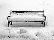 Snow Scene Metal Prints - Snow Scene 8 Metal Print by Patrick J Murphy