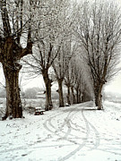 South Of France Art - Snow Scene by Fine Art  Photography