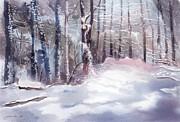 Joan A Hamilton Prints - Snow Sparkled Woods Print by Joan A Hamilton