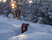 Mail Box Posters - Snow - Strathavon Postbox Poster by Phil Banks