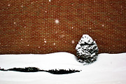 Tim Buisman Posters - Snow Wall Poster by Tim Buisman
