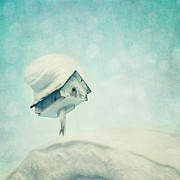 Coldness Photo Posters - Snowbirds Home Poster by Priska Wettstein