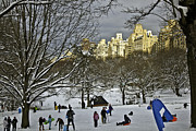 Woman 2011 Framed Prints - Snowboarding in Central Park 2011 Framed Print by Madeline Ellis