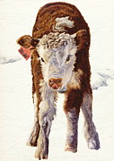Ranching Drawings - Snowbound by Dale Jackson