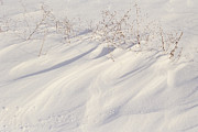 Snow Drifts Prints - Snowdrift Patterns Print by Sharon Elliott