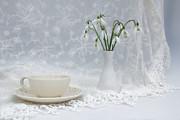 Snowdrops At Teatime Print by Ann Garrett