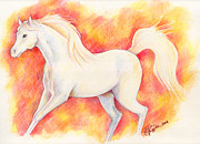 Wild Horses Drawings Originals - Snowfire by Tricia Griffith