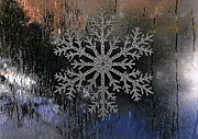Snowflake On A Night Window Print by Elaine Manley