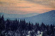 Snowing Sunset Print by Melanie Lankford Photography