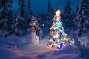 Snowy Night Art - Snowman Stands In A Snowcovered Spruce by Kevin Smith