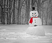 Winter Storm Photos - Snowman by Steven  Michael