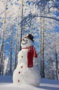 Wintry Posters - Snowman With Red Scarf And Black Top Poster by Kevin Smith