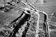 snowmobile tracks in snow across frozen field Canada Print by Joe Fox